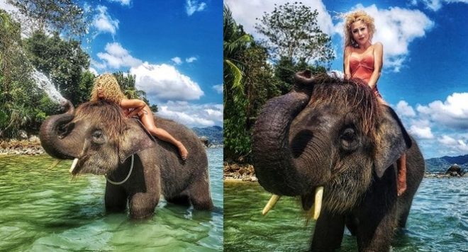 Ася Капчикова яхна слон