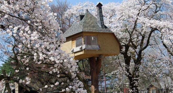 20 странни приказни къщи от всички краища на света (СНИМКИ)