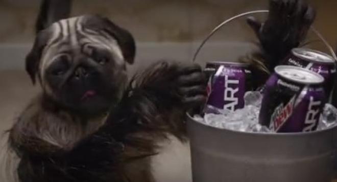 Вижте рекламите на Супербоул (Зародиш яде чипс,