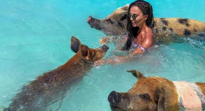 Николета се заиграва с прасета на Бахамите